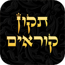 RustyBrick Tikkun iPad & iPhone App